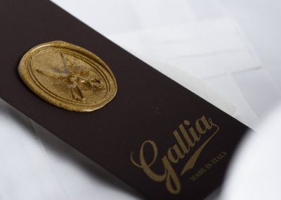 GALLIA_0273-2